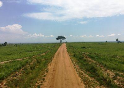 Recorriendo África