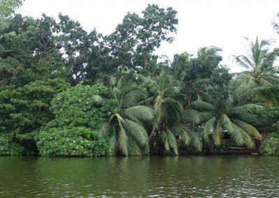 Río Madu