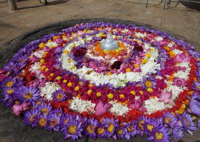 Flores en Anuradhapura